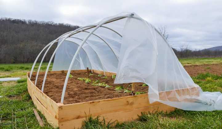 Эффективное средство от сорняков: 145 фото и видео советы как избавиться от нежелательных растений