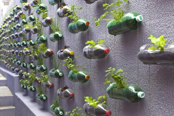 Красивая клумба из бутылок - лучшие идеи оформления и самые стильные решения и сочетания (100 фото)