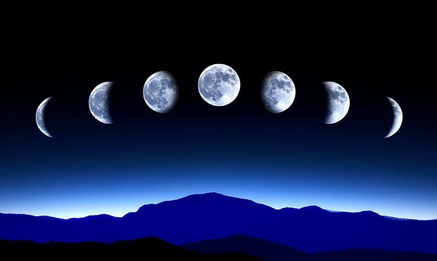 Лунный календарь садовода – миф или реальность?