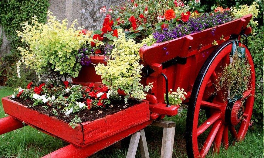 Садовые товары для сада и огорода