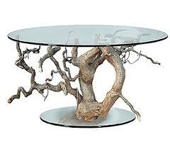 Стол из корня дерева - требования к выбору древисины