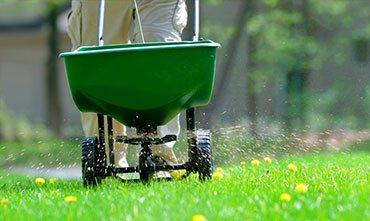 Уход за газоном весной - аэрация, вычесывание, укатка