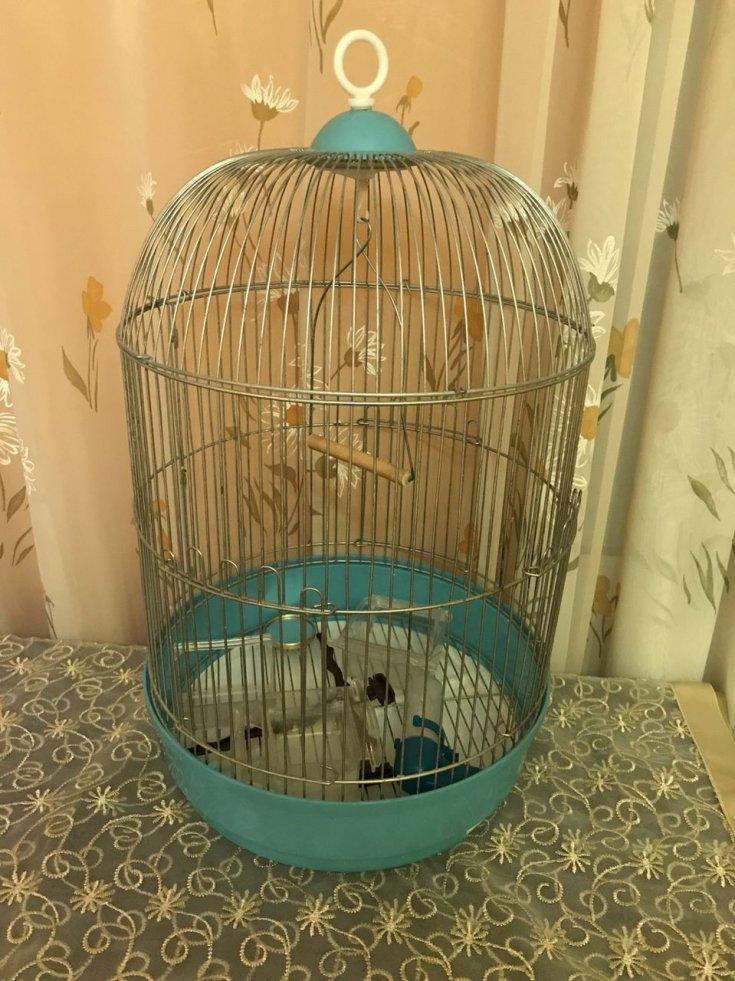 Как сделать клетку для попугая