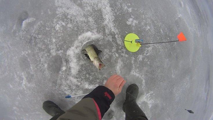 видео мастер-класс + 145 фото как сплести снасти для зимней и летней рыбалки